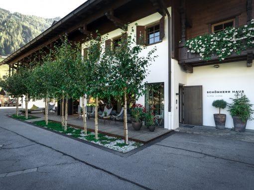 Umbau Schönherr Haus